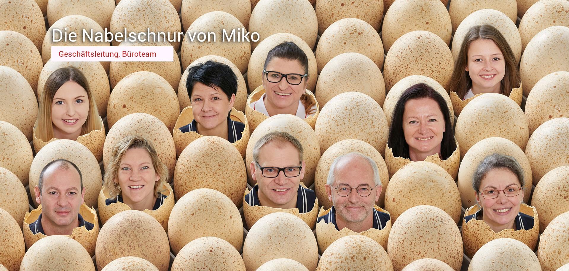 Das Miko Team